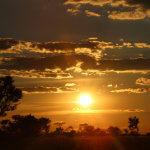 6 Day Kruger Safari