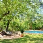 Ivory Lodge Pool - 6 Day Luxury Zimbabwe Safari