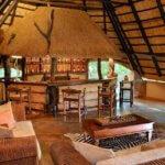 Ivory Lodge Bar - 6 Day Luxury Zimbabwe Safari