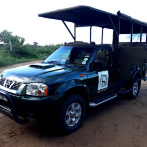 Budget Kruger Safari - Vehicle