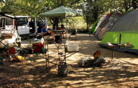 Kruger Campsite